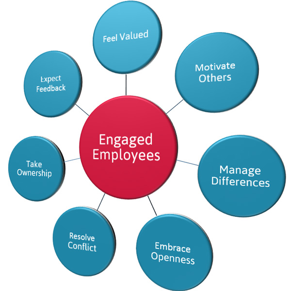 What Drives Employee Engagement